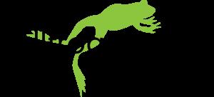 Bull Frog Power